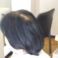 ピュアミングとバイオプログラミングのエクセレントプログレス美髪効果バツグン!
