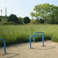 公園の草抜き、検討中
