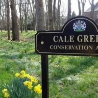 うちの近所の空き地のフクロウ、水仙に囲まれてうれしそう。春真っ盛り、レントに参加