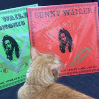 BUNNY WAILER / SOLOMONIC SINGLES