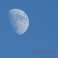 今日も明るい空に浮かんだお月様