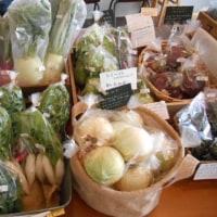 今が旬のきっちゃんの野菜。
