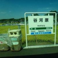 青春18切符「夏」で行く_水郡線駅スタンプ収集レポート_1