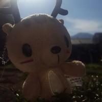 12月に暖かい日差しでのんびり日向ぼっこ!!!
