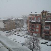 12月を前に、ソフィアに初雪!!