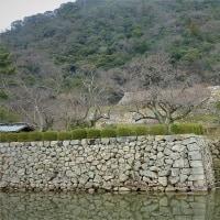 カニと温泉を求めて・・・倉吉・鳥取へ ③ 鳥取城址と仁風閣