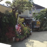 醤油蔵見学 in奈良