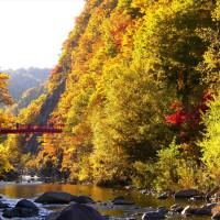 「二見つり橋」の紅葉 !
