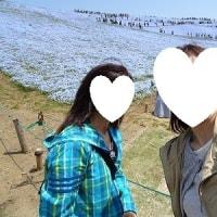 ひたちなか海浜公園へ 2017 0425