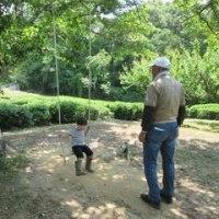 茶畑と木陰のブランコのある三草小学校