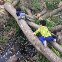 4月15日は子どもたちが参加した週末作業
