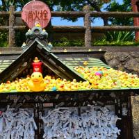 ワンコと四万・伊香保温泉に行ってきました♪ (群馬) その3