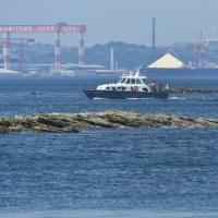 平成29年度日本国遠洋練習艦隊出航〜「練習艦隊ただいま三浦半島沖通過」