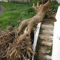 サン・ポアル様 災害復旧工事