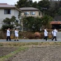茂名の里芋祭