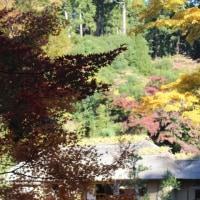 ぶらり旅・西山荘(西山御殿跡)④(茨城県常陸太田市)