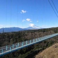 三島スカイウォークに行ってきた☆ 日本一の釣り橋♪