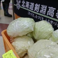 西條士別店にて販売会