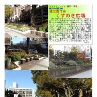 横浜-225 くすのき広場 横浜市庁舎