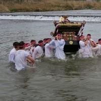 はむら花と水のまつり、神輿の川入り。