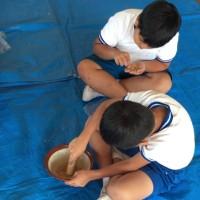 3年生バケツ稲(籾摺り)
