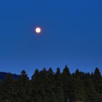 月夜のきれいな日