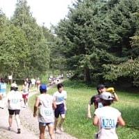 森林浴マラソン大会も開催されます