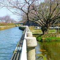 黒川(北清水橋付近)