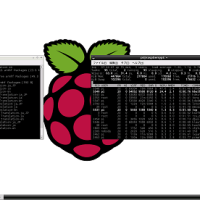 Raspberry Pi�Υǥ����ץ쥤�˲����ѥƥ�Ӥ�Ȥ�