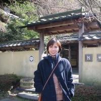 Hot Springs (温泉)