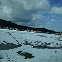 雪国に行ってきました。