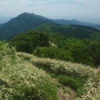 小城 天山 七曲り峠より いろんな花を楽しみました・・・有田町2017.5.21