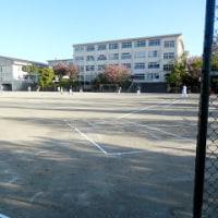 校区内ソフトボール(VS友丘4丁目)