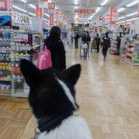 お買い物 相方さんを探せ 其の壱