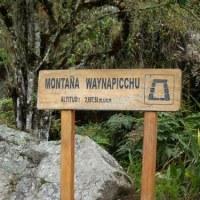 ロサンゼルス・マチュピチュ・ウユニ旅行記・60(7日目・ワイナピチュ登山4)
