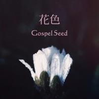 >Gospel Seedのシングル「花色」のダウンロード販売がスタートしました