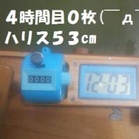 2017/4/24   4/22(土)西大谷池 桟橋外向き