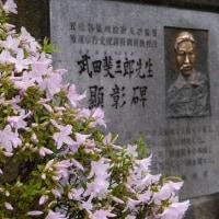 """五稜郭公園は""""初夏の彩り""""..."""