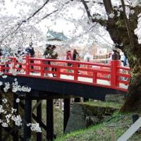 下条橋なう❢(桜まつり2017)