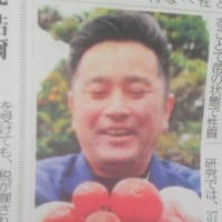 トマトに(^-^)