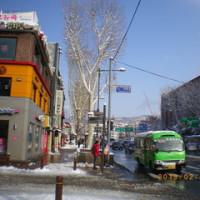 ソウル地下鉄4号線恵化駅4番出入口近くにある、大明ゴリの石碑