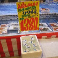 ♪♪ クリオネは鮮魚か?