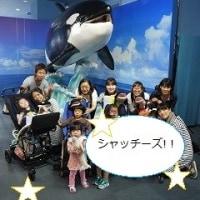 お出かけ「名古屋港水族館」