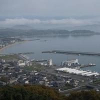 糸島市岐志の風景(ヨシ)