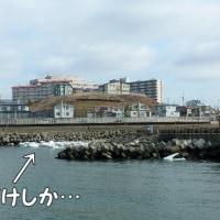 流氷が、釧路・千代ノ浦海岸に来た v(^^*)