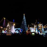 クリスマスイルミネーション今年もステキですよ