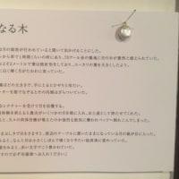 カウントダウン5日目!!