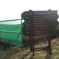千葉県山武郡横芝光町の千葉県造園協会の森(海岸の防風林の再生)2017年