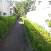 蛇崩川馬事公苑コース 約7Km