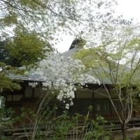 龍珠院(秋川渓谷)